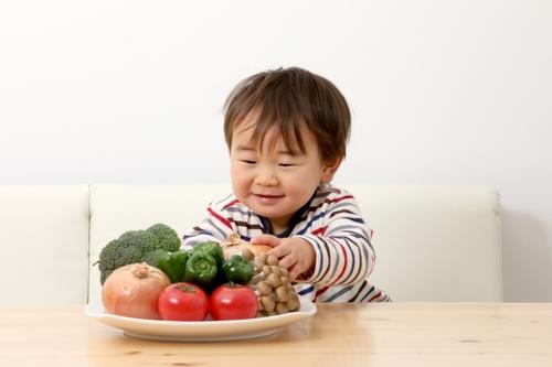 未就学児のママパパ必見!五感で脳を刺激し育てる幼児食/中田恵理